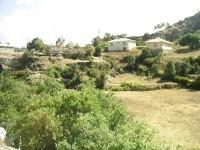 Arslantaş Köyü - 8