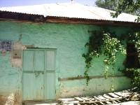 Elmaağaç Köyü - 10