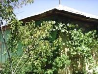 Elmaağaç Köyü - 1