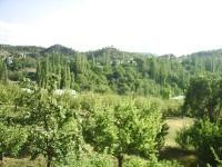 Kozağaç Köyü - 13