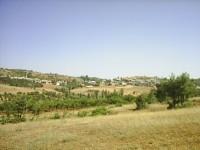 Sazlı Köyü - 8