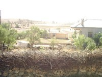 Karacaardıç Köyü Cami Mah. - 13