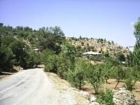 Elmaağaç Köyü - 5