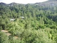 Kozağaç Köyü - 14